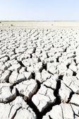 Dry land, Parc Regional de Camargue, Provence, France — Stock Photo