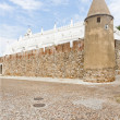 Stock Photo: Viando Alentejo Castle