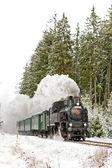Steam train near Hradsko — Stock Photo