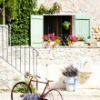 Bicycle, Provence, France — Stock Photo #9066376