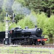 Steam train, North Yorkshire Moors Railway (NYMR), Yorkshire, En — Stock Photo