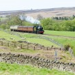 Stock Photo: Steam train, North Yorkshire Moors Railway (NYMR), Yorkshire and
