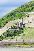 Ruins of Ehrenfels Castle, Rhineland-Palatinate, Germany — Stock Photo