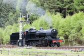 Steam train, North Yorkshire Moors Railway (NYMR), Yorkshire, En — Stock Photo