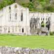 Ruins of Rievaulx Abbey, North Yorkshire, England - Zdjęcie stockowe