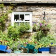 Stock Photo: House with plants in Blanchland, Northumberland, England