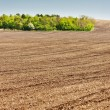 Landscape with a field in Southern Moravia, Czech Republic — Stock Photo