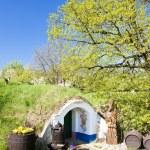 Wine cellar, Petrov - Plze, Czech Republic — Stock Photo #9544470