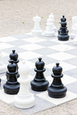 Chess, Bingen am Rhein, Rhineland-Palatinate, Germany — Stock Photo