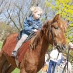 Little girl on horseback — Stock Photo #9704024