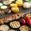 Meat skewer and vegetables on electric grill — Stock Photo