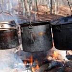 Tree tourists kettle on fire — Stock Photo