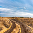 Dirt road in steppe — Stock Photo
