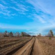Countryside road in steppe — Stock Photo