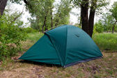 Tourist tent in forest — Stock Photo