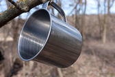 Steel cup on tree — Stock Photo