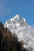 Roccia di montagna — Foto Stock
