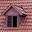 Squint window on red roof — Stock Photo