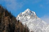 Scena di montagna con roccia — Foto Stock