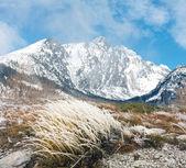Berg scène — Stockfoto