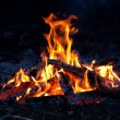 Flame of campfire — Stock Photo