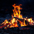 Flame of campfire — Stock Photo #8625486