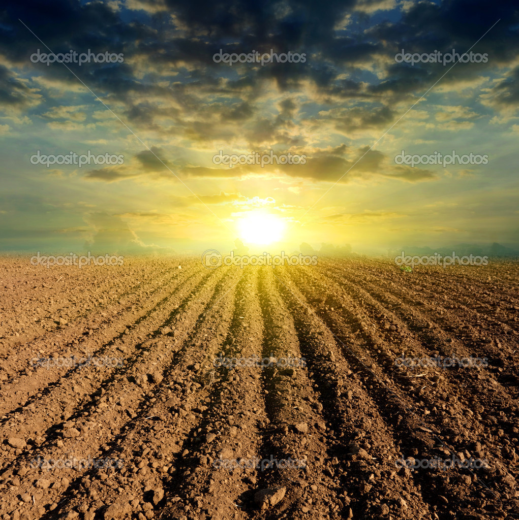 Sunset over ploughed field — Stock Photo #8770107