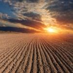 Sunset over farm lands — Stock Photo