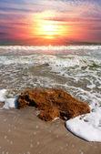Summer scene on sea — Stock Photo