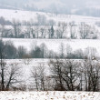 Winter fields — Stock Photo #9522368