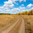 Countryside road — Stock Photo #9523742
