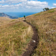 Footpath in mountains — Stock Photo #9523752