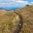 Stock Photo: Footpath in mountains