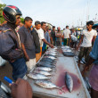 Fish market in Mirissa - 