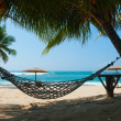 Stock Photo: Hammock between palm trees