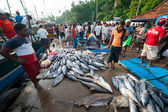 Fish market in Mirissa — Stock Photo