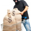 Happy robber with sack full of dollars — Stock Photo #8062952