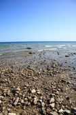 Seashore - Lake Huron — Stock Photo