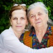 Stock Photo: Family - middle age daughter and senior mother