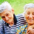 Stock Photo: Two seniors in love