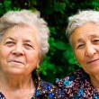 Two old ladies — Stock Photo