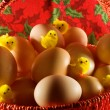 Easter: little yellow chickens and simple eggs — Stock Photo #9664007
