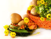 Easter: eggs, basket, flowers and chickens on white — Стоковое фото