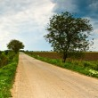 Rural road and cloudy dramatic sky — Stock Photo