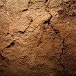 Stock Photo: Texture background - dry cracked brown earth
