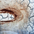 Textured grunge rusty background with cracks — Stock Photo