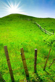 Green rural hill and sun over it — Stock Photo