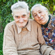 Happy and joyful old senior couple — Stock Photo