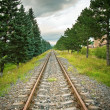 Royalty-Free Stock Photo: Railway track in perspective