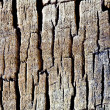 Wood and cracks background — Stock Photo